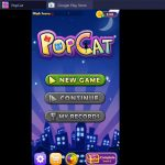 PopCat for PC